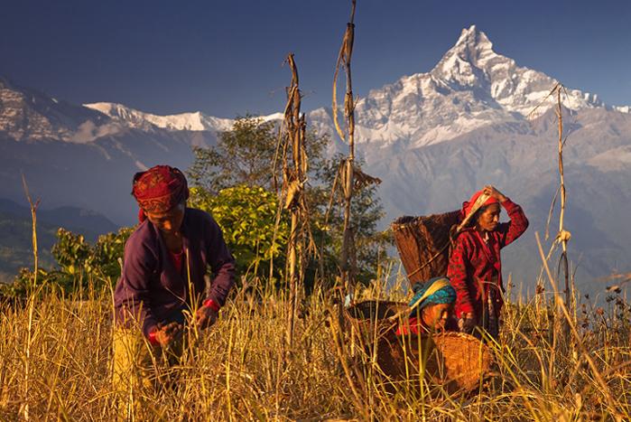 Nepal - Himalayan Adventure